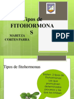 Fitohormonas-8IELM