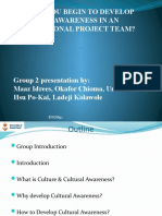 How to begin to develop cultural awareness in an international project team. - Group 2 (1)