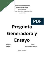 Pregunta Generadora y Ensayo Itamar Castellano