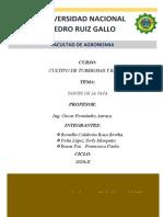 PARTES DE LA PAPA_ GRUPAL