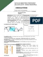Resumo_Ondulatoria