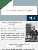 3.-Os-muitos-behaviorismos-continuacao