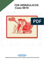 Case 8810 Descritivo