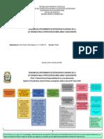3. Evaluación Esquema Detención en Flagrancia LOPNNA Meily Pérez FS09A