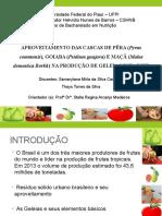 Universidade Federal do Piauí – UFPI