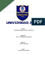 Abel Aguasvivas - Resumen Unidad II