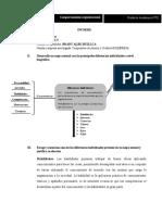 informe PA2