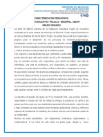 DIAGNÓSTICO GRADO SEGUNDO I.E TRUJILLO