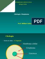 Citologia - Citoplasma e Citoesqueleto