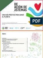 Ecosystem Restoration Playbook SpanishV3