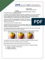 Actividad Diagnóstica 10mo ECA