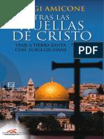 Tras_las_huellas_de_Cristo_viaje_a_Tierra_Santa_co..._----_(TRAS_LAS_HUELLAS_DE_CRISTO_VIAJE_A_TIERRA_SANTA_CON_LUIGI_GIUSSANI) (1)