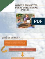 Proyecto Educativo Integral rio