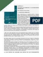 UNIDAD 1 - Principios Generales del Derecho, Garcia Netto Capitulo 1