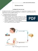 Système Nerveux 1