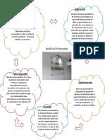 Perfil Del Cliente y Del Proveedor_ Ligy Gabriela Corredor
