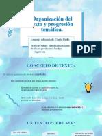 Organización del texto y progresión temática.