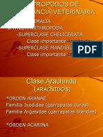 ectoparasitos