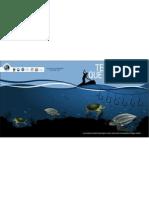 PROGRAMA DE REDUCCIÓN DE CAPTURA INCIDENTAL DE TORTUGAS MARINAS EN LA PESCA CON PALANGRE  AVANCES DE PAIS