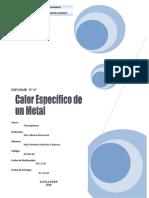 Calor Específico de un metal