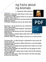 Interesting Facts about Interesting Animals