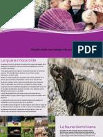 Catalogo de La Extincion de Flora y Fauna