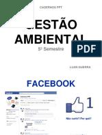 gestoambiental-111126115822-phpapp01