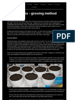 Growing tree ferns from spore - method