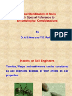 Stabilization of Soils by Termites
