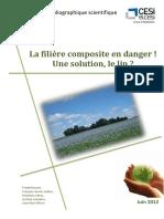 100903692 Rapport Composite Biosource a Base de Lin