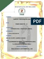 TAREA_ENSAYO_EXPRESION_NO_VERBAL_NESTOR_COELLO