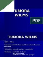 32280504-TUMORA-WILMS