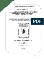 DIRECTIVA PRÁCTICA PROFESIONAL II DE EDUCACIÓN_2021