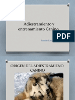 Adiestramiento y Entrenamiento Canino