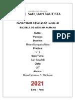 ROJAS ESCUDERO, C. STEPHANIE- DRA. MOSQUEIRA - PRACTICA N° 3