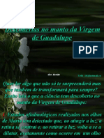A Virgem de Guadalupe