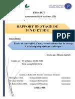 rapport SFE 2018 IS
