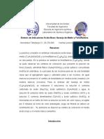 Informe 11