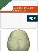 6.) Articulaciones del Cráneo, ATM, Atlanto-Occipital y Atlanto-Axoidea - Prof. Pedro Bolívar