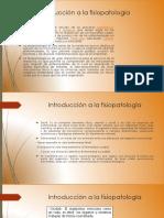 Fisiologia II (21)-Convertido
