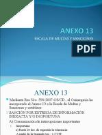 Anexo 13