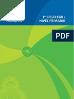 nap-egb-primario