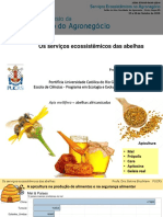 Os-serviços-ecossistêmicos-das-abelhas-Betina-Blochtein