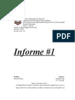 Informe #1. DIN