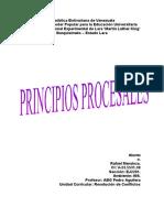 Principios Procesales T1