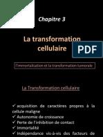 CHAP 3