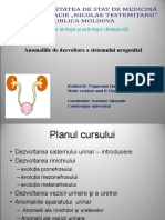 Anomaliile de Dezvoltare a Sist Urinar