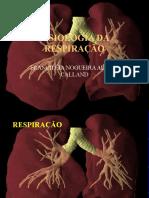 fisiologia da respiração