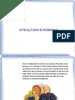 viticultura in romania