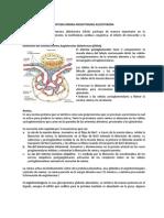 SRAA resumen